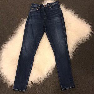 Agolde High Waisted Skinny Jean